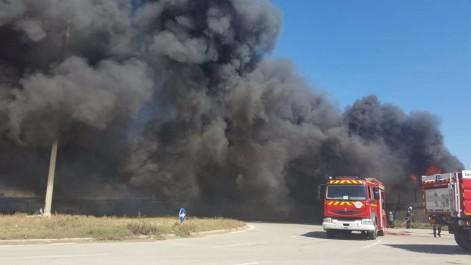Plateforme pétrochimique de Skikda: Incendie près de la centrale thermoélectrique