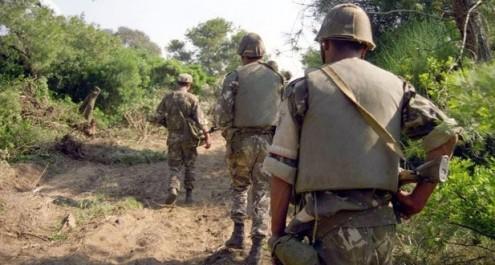 Lutte antiterroriste: trois (03) abris pour terroristes détruits à Bouira  (MDN)