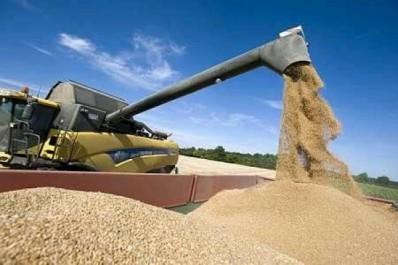 Rapport US sur les importations de céréales: L'Algérie au 3e rang mondial