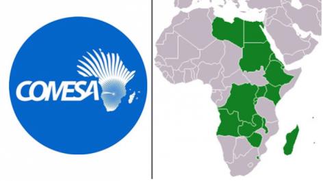 L'Afrique progresse vers la création d'une grande zone de libre-échange d'ici octobre (COMESA)