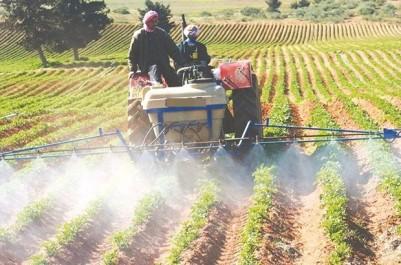Bouazghi: 80% des agriculteurs n'ont pas d'assurance agricole