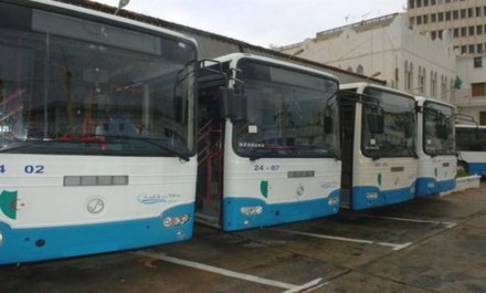 Alger: L'ETUSA retire 6 nouvelles lignes de bus après la contestation des transporteurs privés