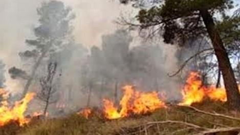 Boumerdès: un jeune de 20 ans périt à cause des incendies