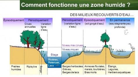 El Tarf : finalisation de l'étude d'aménagement pour la protection des zones humides contre les inondations