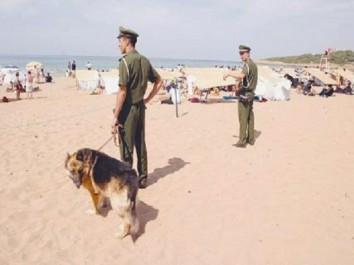 Mostaganem – 60 infractions enregistrées contre les plagistes: La gendarmerie mène un coup de balai sur les plages