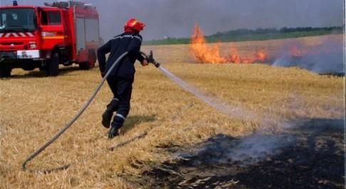 El Ançor: Trois hectares ravagés par le feu