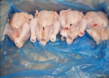 Mostaganem: Plus de 600 kg de poulets avarié saisis