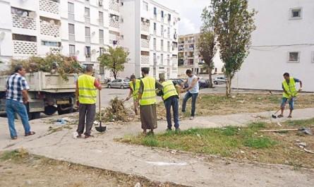 La population vit littéralement dans les ordures: Une vaste opération de nettoyage des quartiers de Souk Ahras