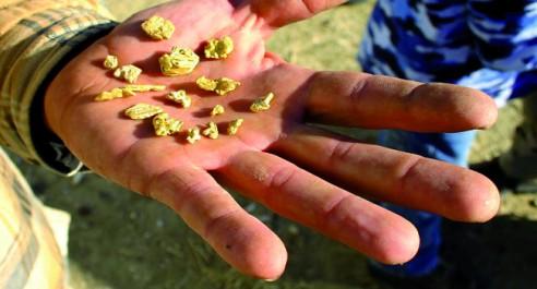 Une importante quantité d'or aurait été découverte: Ruée vers l'or à Djanet