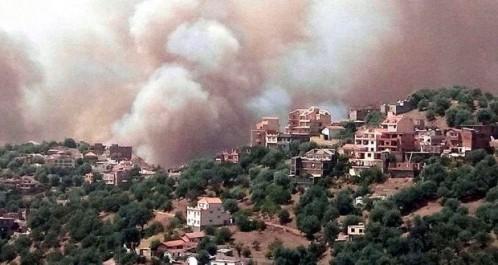 Les flammes dévorent les forêts dans 10 wilayas