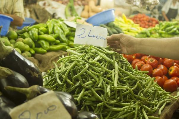 Les haricots verts sont vendus à 240 da/kg. ©Algerie360