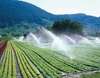 Ressources hydriques: Vitale bataille