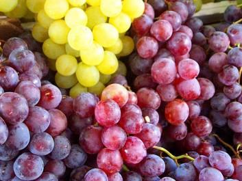 Mostaganem: Le raisin des Ouled-Cheikh