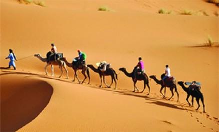 Face à la Difficulté d'attirer les touristes: Le ministre veut faire dans la promotion