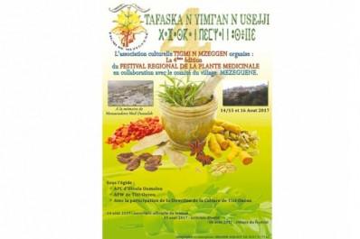 4E édition du festival régional des plantes médicinales à Mezeguène: (Illoula Oumalou):  Les plantes potagères et médicinales à l'honneur