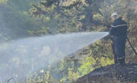 Sonelgaz: des réseaux électriques gravement endommagés par les feux de forêts