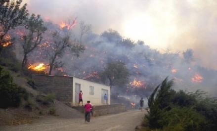 Plus de 18 individus impliqués dans le départ des feux de forêts arrêtés