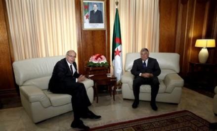 Guitouni et l'ambassadeur russe évoquent la coopération énergétique