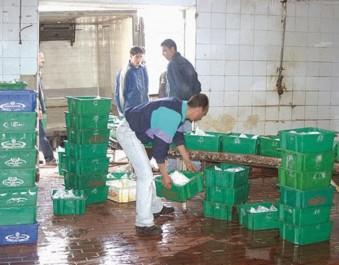 Production du lait: un manque flagrant d'hygiène
