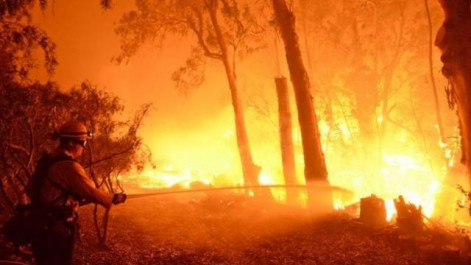 Des milliers d'évacuations en raison de feux de forêt dans l'Etat du Montana