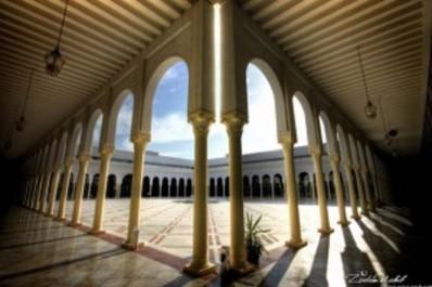 1ère Rencontre Internationale d'Art Contemporain d'Alger en octobre