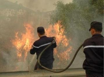 TIZI OUZOU: L'ANP à la rescousse des sapeurs-pompiers