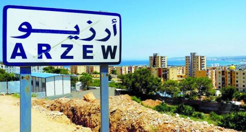 La pollution atmosphérique, pointée du doigt à Arzew (Oran) : Près de 35% des élèves souffrent de troubles respiratoires