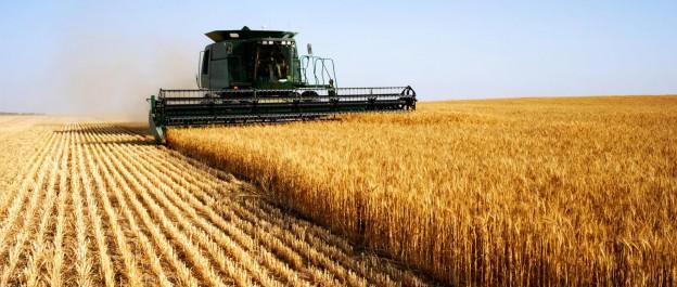 Ouargla : La formation en agriculture une priorité