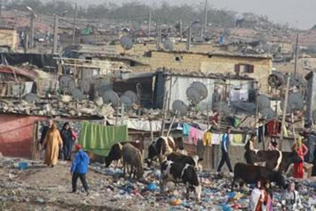 Des individus se sont sp cialis s dans le commerce de for Habitat rural en algerie pdf