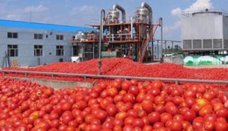 Industrie agroalimentaire: La Mitidja premier pôle de compétitivité du secteur