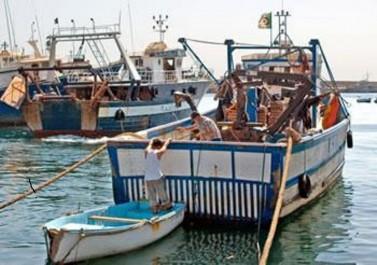 Agriculteurs, pêcheurs et artisans:  Le ministère du Commerce impose des règles