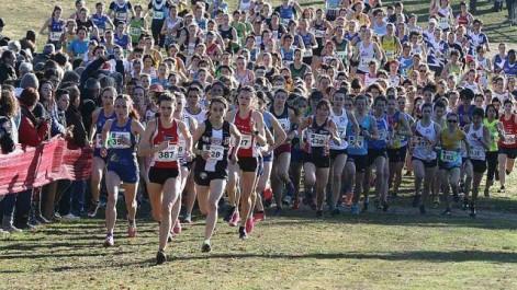 Athlétisme: championnat national de Cross-country 2018: Rendez-vous à Chlef