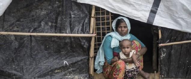Les réfugiés rohingyas au Bangladesh franchissent le cap du demi-million