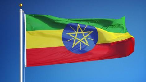 Ethiopie: un ancien vice-ministre jugé pour corruption