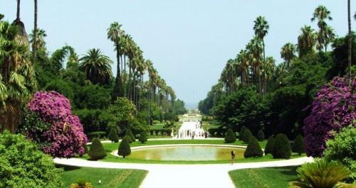 Alger : plus de 200 jardins en voie de réhabilitation