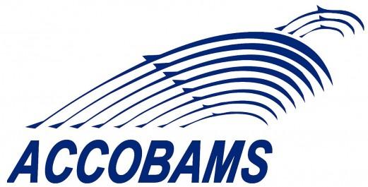 Algérie-Préservation des cétacés: Oran accueillera en novembre la 4ème la conférence de l'organisation internationale ACCOBAMS