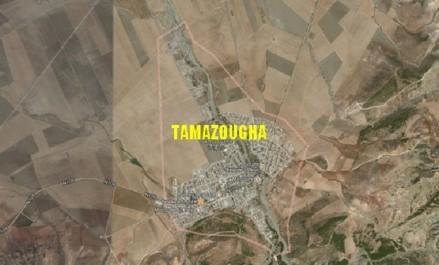 La wilaya d'Ain Témouchent mise sur la future zone industrielle de Tamazougha
