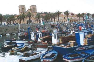 EL-TARF: 43 projets touristiques validés