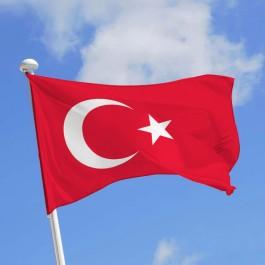 Turquie : Prison à vie pour 40 personnes qui voulaient «tuer Erdogan»