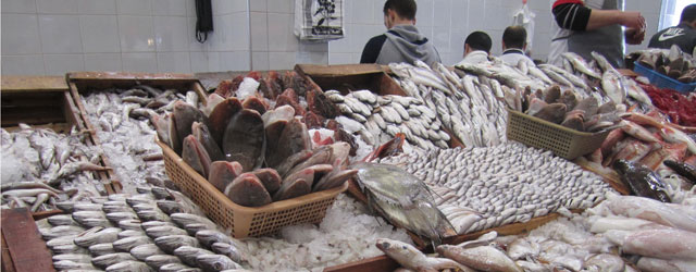 El Bayadh : 9 quintaux de poissons avariés saisis